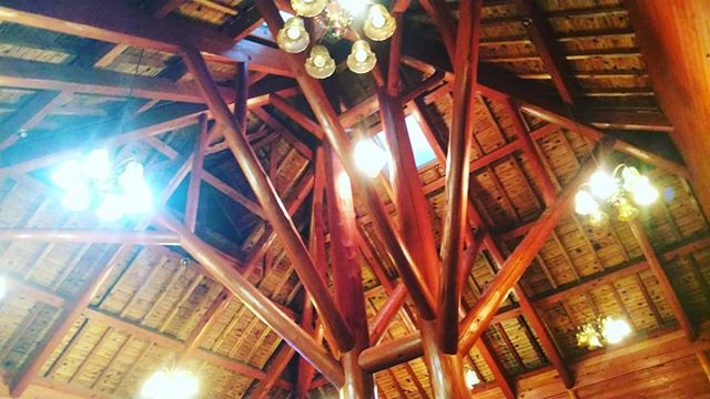 森林に、木に囲まれていやされましたー台風さん お手柔らかにお願いします#ログハウス #loghouse #コテージ #cafe #カフェ #bar #木づかい #woodaction #あいあいらんど #tokushima #naka@aiai_land_tokushima